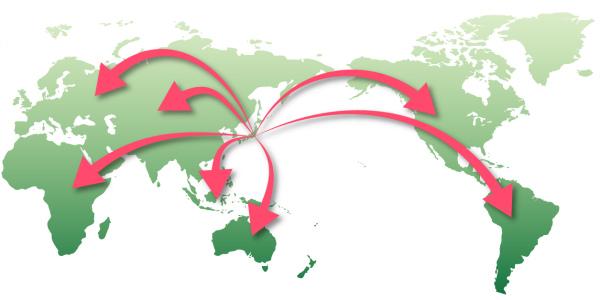 国内外の株式投資